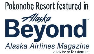 aa-beyond-logo
